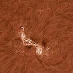Welche solaren Strukturen lassen sich mit Baader-Zubehör beobachten (H-Alpha)