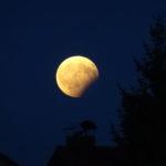 Achtung, heute partielle Mondfinsternis!