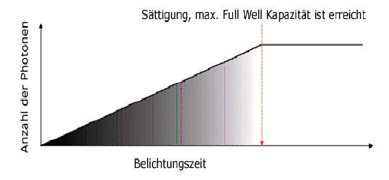 Die Abbildung oben zeigt den Zusammenhang zwischen Belichtungszeit, Anzahl der einfallenden Photonen und der Sättigung (Full Well Kapazität) eines Bildsensors