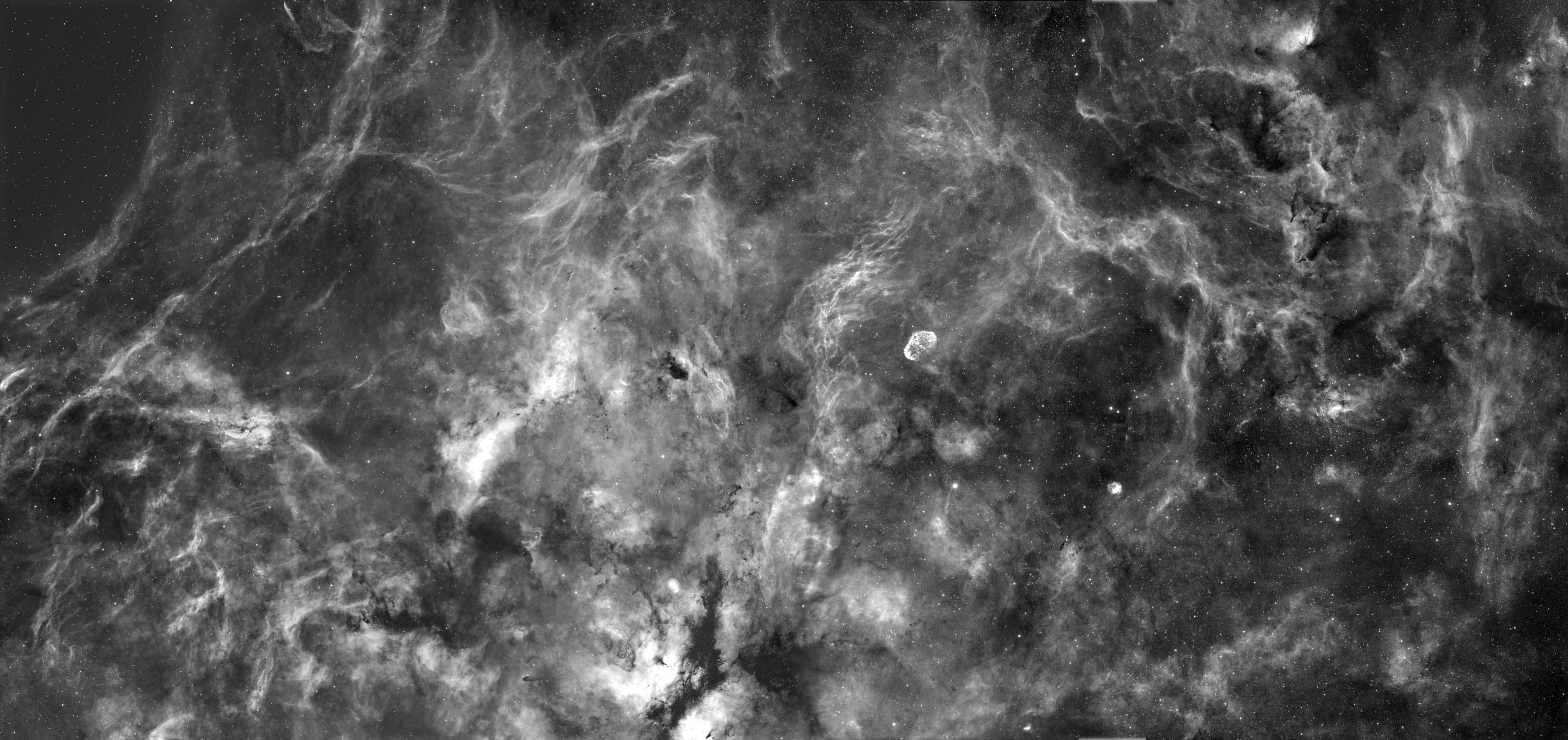 12 Panel Mosaic of Cygnus Region