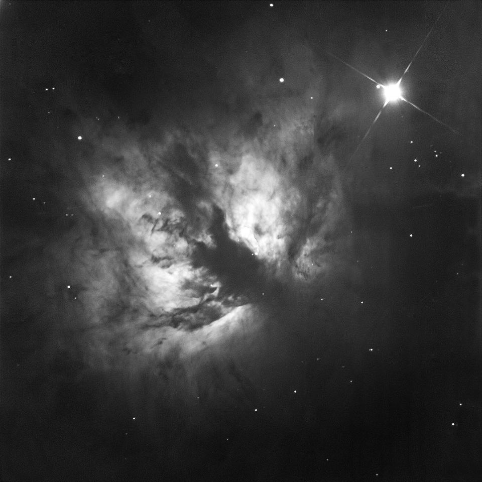 NGC2024 (The Fame Nebula)- James Turner