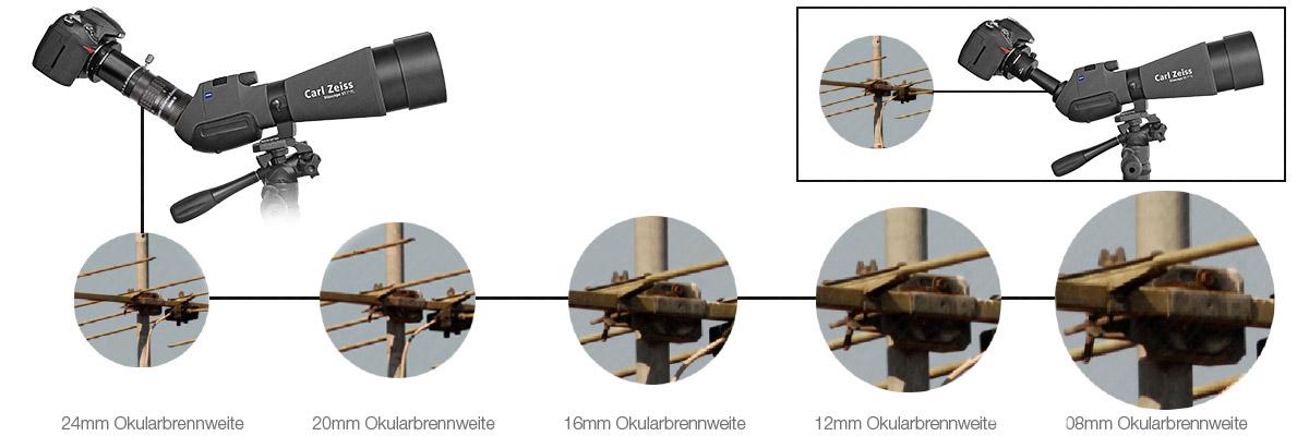 Vergleich Festbrennweite und Hyperion Mark IV Zoom